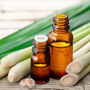 tinh dầu sả chanh bán phổ biến